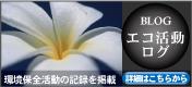 沖縄ダイビングエコ活動ログ